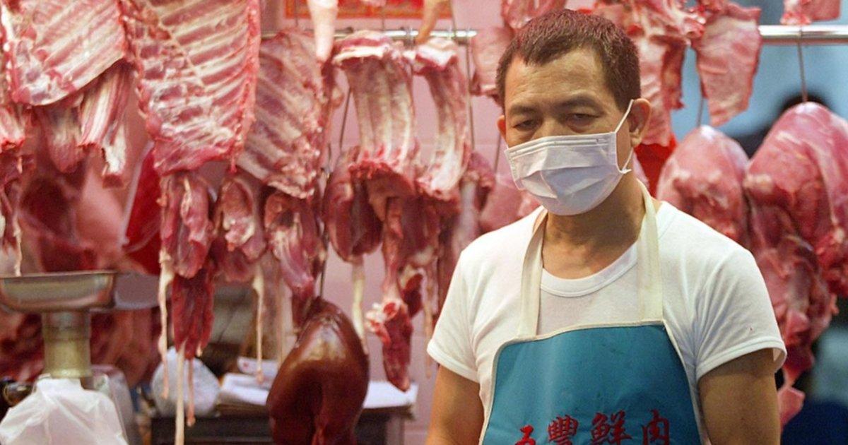 La dangereuse passion des Chinois pour les animaux exotiques